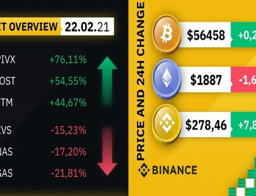 Market overview by #Binance 22-02-2021